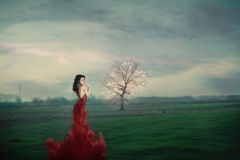 Fantasy woman. Beautiful young woman in  fantasy red  dress on green  field photo compilation, grain added Royalty Free Stock Photo