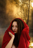 Beautiful young woman in fantasy style. Girl in a red dress. Book cover Stock Photography