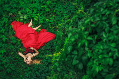 Beautiful young woman in fashion red dress Royalty Free Stock Images