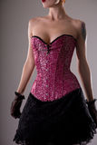Beautiful young woman in fashionable corset Stock Image
