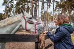 Beautiful young woman is feeding horse with hands Stock Photo