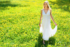 Beautiful young woman among the flowers Royalty Free Stock Image