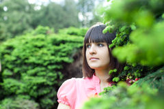 Beautiful young woman in the forest Royalty Free Stock Photography