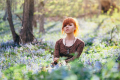 Beautiful young woman in the forest Royalty Free Stock Image