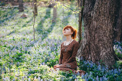 Beautiful young woman in the forest Royalty Free Stock Photos