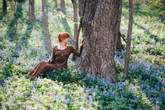 Beautiful young woman in the forest Royalty Free Stock Images