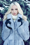 Beautiful young Woman in Fur and leather gloves Royalty Free Stock Photography