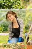 Beautiful young woman gardening Royalty Free Stock Images