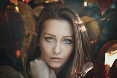 Beautiful young woman gaze. Autumn leaves portrait Stock Images