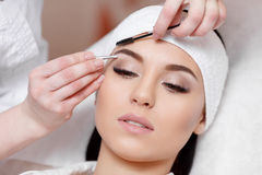 Beautiful young woman gets eyebrow correction procedure Royalty Free Stock Photography