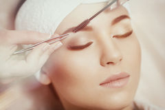 Beautiful young woman gets eyebrow correction procedure Royalty Free Stock Image