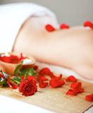 Beautiful young woman getting spa massage. Royalty Free Stock Photos