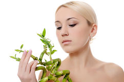 The beautiful young woman with a green bamboo Royalty Free Stock Photo