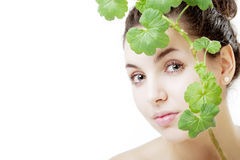 Beautiful young woman with a green plant Royalty Free Stock Photography