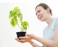 Woman with green sprout of tree Royalty Free Stock Images