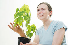 Woman with green sprout of tree Royalty Free Stock Photography