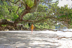 Beautiful young woman at Hahei Beach, New Zealand Stock Image