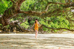 Beautiful young woman at Hahei Beach, New Zealand Stock Images