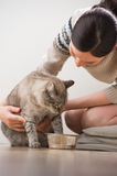 Beautiful young woman and her cat Royalty Free Stock Photo