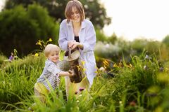 Beautiful young woman and her cute son watering plants in the garden at summer sunny day. Beautiful young women and her cute son watering plants in the garden at royalty free stock photo