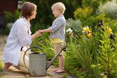 Beautiful young woman and her cute son watering plants in the garden at summer sunny day stock image