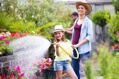 Beautiful young woman with her daughter watering the plants with a hose in the greenhouse. royalty free stock image
