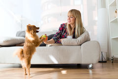 Beautiful young woman with her dog playing with ball at home. Royalty Free Stock Photography