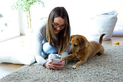 Beautiful young woman with her dog using mobile phone at home. Stock Photos