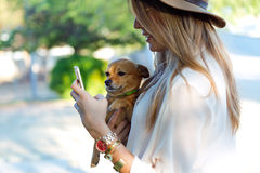 Beautiful young woman with her dog using mobile phone. Royalty Free Stock Photography