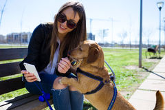 Beautiful young woman with her dog using mobile phone. Royalty Free Stock Photos