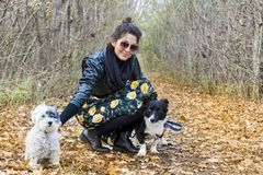 Beautiful young Woman with her Dogs in the Park. Beautiful young woman in the autumn park with her dog stock photography