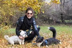 Beautiful young Woman with her Dogs in the Park. Beautiful young woman in the autumn park with her dog stock photos