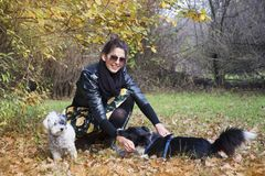 Beautiful young Woman with her Dogs in the Park. Beautiful young woman in the autumn park with her dog royalty free stock photo