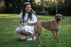 Young woman with her dog in the park. A beautiful young woman with her pet dog in the park enjoying the day Stock Images