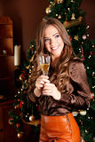 Beautiful young woman holding a glass of champagne Stock Photos