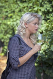 Beautiful young woman holding glass of white wine in vineyard. Stock Photos