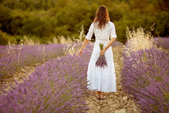 Beautiful young woman, holding lavender in a field Stock Images