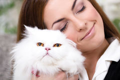 Beautiful young woman holding a Persian cat Royalty Free Stock Images