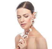 Beautiful young woman holding sakura branch Stock Photos