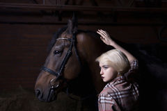 Beautiful young woman with a horse royalty free stock image