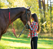 Beautiful young woman with a horse outdoor Royalty Free Stock Image
