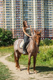 Beautiful young woman on horseback Royalty Free Stock Image