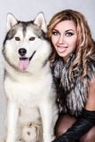 Beautiful young woman with a husky dog Royalty Free Stock Photos