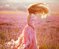 Beautiful young woman in the lavender fields. Royalty Free Stock Image