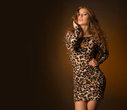 Beautiful young woman in leopard dress. Posing in studio Royalty Free Stock Photos