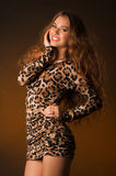 Beautiful young woman in leopard dress Royalty Free Stock Photography