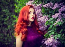 Beautiful young woman and lilac. Sensual red-haired girl Royalty Free Stock Images