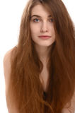 Beautiful young woman with long brown hair. Stock Photos