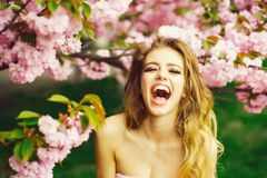 Happy woman in blossom royalty free stock photos