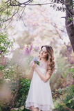 Beautiful young woman with long curly hair in a garden with lilacs. Beautiful young woman with long beautiful curly hair in a white chiffon dress posing in a Royalty Free Stock Photography